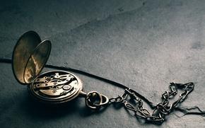 Picture watch, mechanism, pocket, Precision