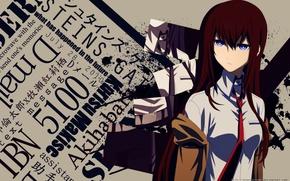 Picture girl, Steins;Gate, Kurisu Makise