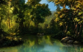 Wallpaper forest, water, stones, swamp, thicket, art