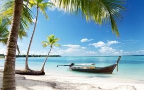 Picture sand, sea, beach, the sky, the sun, tropics, palm trees, the ocean, shore, boat, summer, ...
