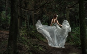Picture forest, dress, Asian, the bride, wedding dress
