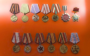 Picture holiday, medals, order