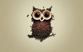 Picture owl, coffee, grain, mugs