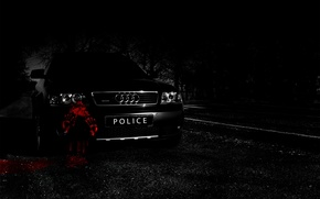 Picture road, machine, forest, night, Audi, audi, black, blood, road, police, night, allroad, woods