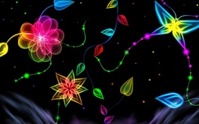Picture flower, light, background, pattern, butterfly
