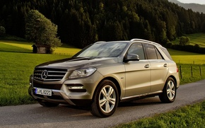 Picture road, trees, background, Mercedes-Benz, Mercedes, jeep, 500, the front, crossover, BlueEfficiency