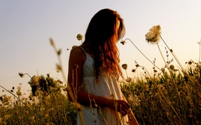 Picture field, summer, girl
