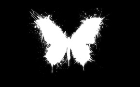Wallpaper style, blot, white, butterfly, black, the accident, good luck, paint