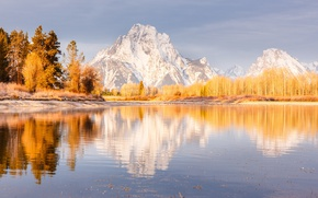 Picture trees, mountains, river, Autumn, USA, National Park Grand Teton