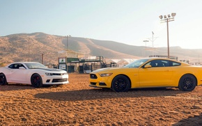 Picture Ford, Chevrolet, muscle car