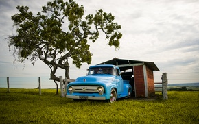 Picture ford, blue, f-100
