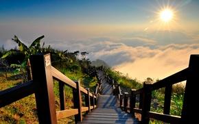 Picture the sun, nature, fog, view, ladder, Landscape