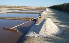 Picture France, Salt, Ile de Ré, Salt marsh, Charente Maritime