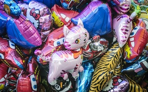 Picture plastic, cat, balloons, inflatable