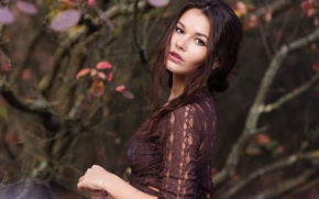 Picture look, branches, brunette, hairstyle, blouse, beautiful, one, walks, bokeh, in the woods