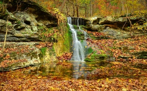 Picture autumn, forest, trees, rocks, waterfall