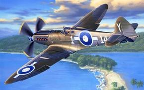Picture art, airplane, painting, Supermarine SEAFIRE Mk. XV