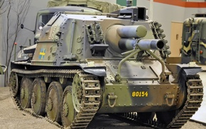 Picture tank, vehicle, cannon