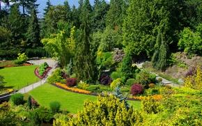 Wallpaper Sunny, beauty, Vancouver, garden, Canada, Queen Elizabeth Garden