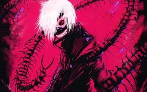 Picture anime, guy, art, Tokyo Ghoul, Ken Kanek, Smell Sasaki