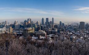 Wallpaper winter, snow, trees, Montreal, Canada