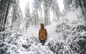 Picture winter, forest, snow, trees, branches, smoke, the hood, mask, male, werewolf