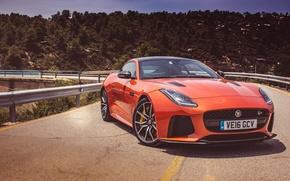 Picture Jaguar, Orange, F-Type, SVR