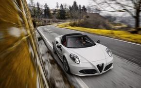 Picture Alfa Romeo, Spider, Alfa Romeo