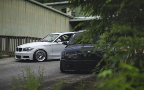 Picture the fence, BMW, black, white, the bushes, E46