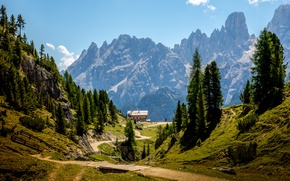 Wallpaper trees, mountains, stones, rocks, Alps, Italy, gorge, Sunny, path, camp, The Dolomites