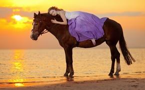 Picture sea, girl, sunset, coast, horse