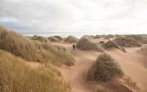 Picture grass, beach, sea, ocean, seascape, sands, man, trail, seaside, wind, dunes