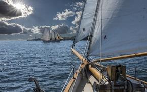 Picture sailboat, Portland, Bay, sails, Portland, Maine, Man, schooner, Casco Bay, CASCO Bay