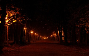 Wallpaper places, street, romance, road, tree, lights, the evening, mood, night, alley, lantern, road, alley, light, ...
