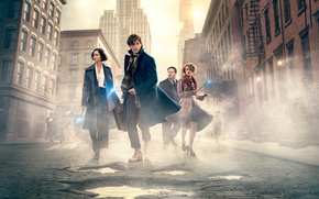 Picture Magic, Wizards, New York, Fantastic beasts and where they live