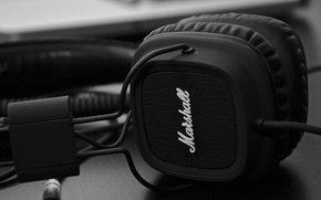 Picture headphones, black and white, b/w, Marshall, on-ear