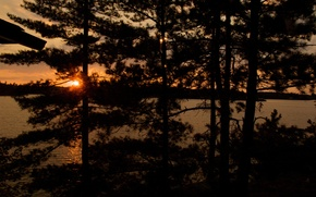 Picture landscape, sunset, nature, lake, the evening, pine