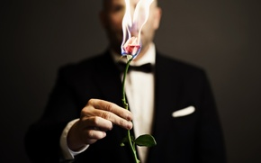 Picture fire, rose, people