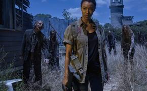 Picture Sasha, The Walking Dead, The walking dead, Sonequa Martin Green