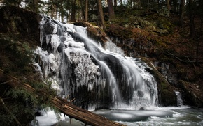Picture winter, forest, waterfall, ice, Connecticut, Woodbury, Nonnewaug Falls