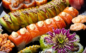 Picture fish, sushi, sushi, rolls, seafood, Japanese cuisine