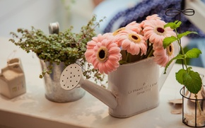 Picture greens, flowers, interior, bouquet, lake, pink, gerbera