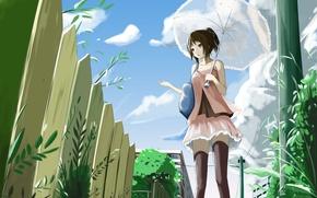 Picture Umbrella, girl, Anime, kyaro54, kyaro, The fence.