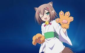 Picture costume, tail, blush, kimono, bell, ears, wink, cat, Baka to Test to Shoukanjuu, Hideyoshi Kinoshita, …