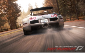 Picture road, Bugatti, need for speed, back, Veyronwide