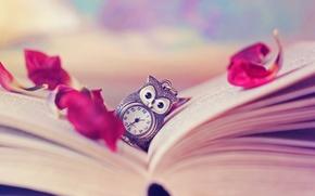 Wallpaper owl, watch, petals, book, page