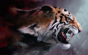 Picture cat, tiger, rendering, figure, rage, fangs