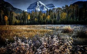 Picture field, autumn, landscape, mountain
