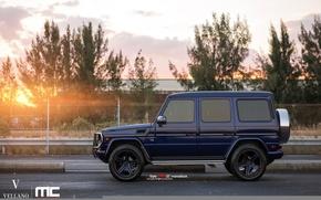 Picture blue, vellano, Mercedes-Benz G550