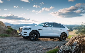 Wallpaper F-Pace, SUV, Jaguar, Jaguar